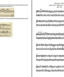 "Vivaldi – Sonata in G major ""per Pisendel"" RV 25 (PDF)"