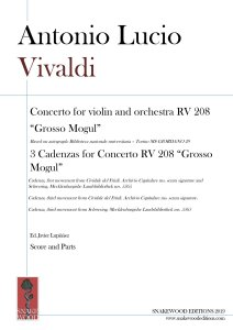 RV 208 Concerto and cadenzas