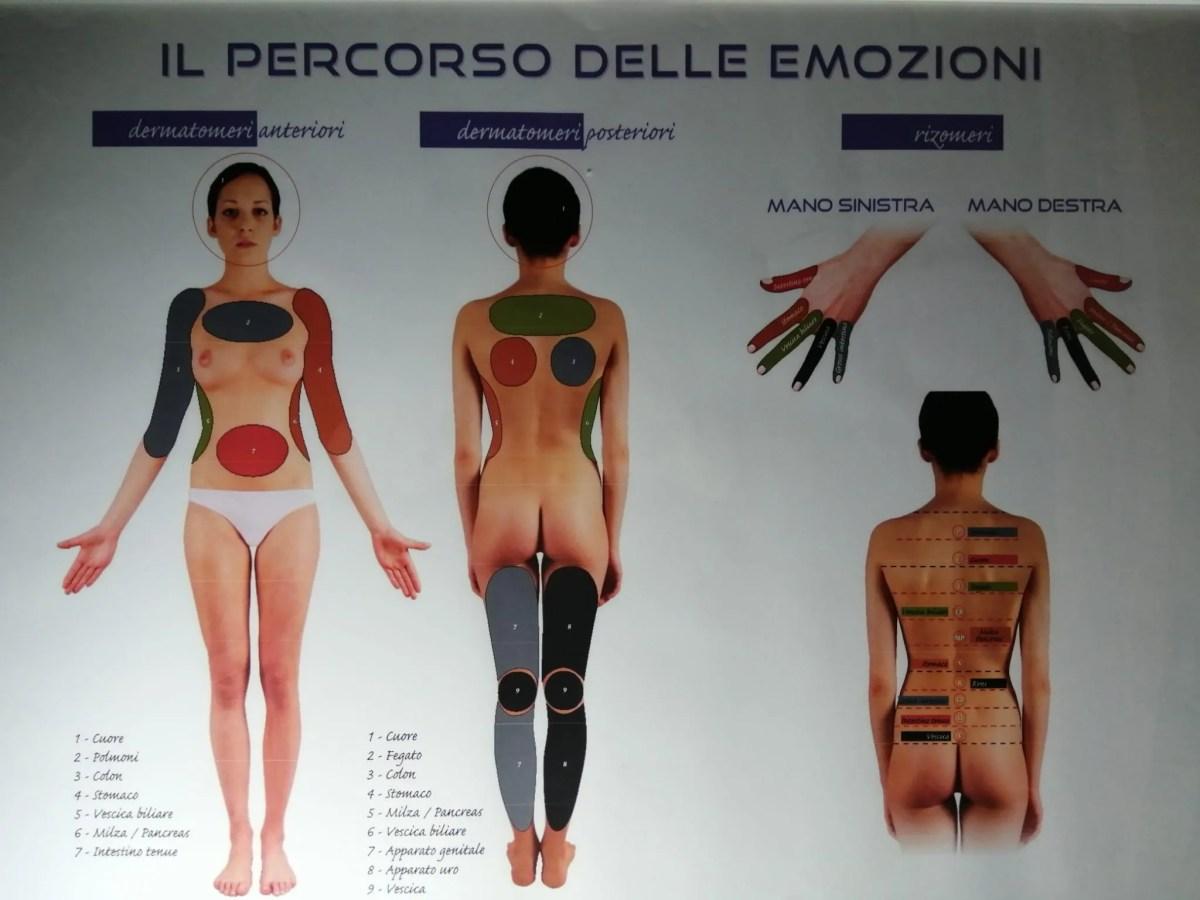 riflessologia corporea appia