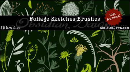 brushes55