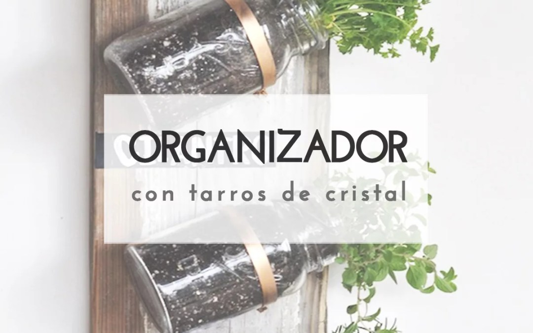 ORGANIZADOR CON TARROS