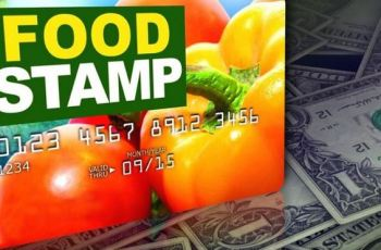 Apply For Food Stamp Card Florida