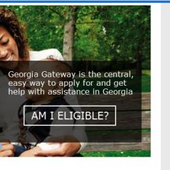 Georgia Food Stamps Online Application