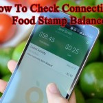 How To Check Connecticut Food Stamp Balance – Connecticut EBT Card Balance