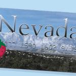 Check Nevada EBT Card Balance | Nevada EBT Card Balance Check