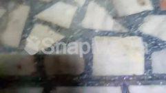 Animal, Apparel, Art, Bird, Brick, Building, Cat, Clothing, Concrete, Face, Flagstone, Floor, Flooring, Fog, Food, Granite, Housing, Mammal, Marble, Mold, Nature, Outdoors, Painting, Path, Pet, Photo, Photography, River, Rock, Skin, Slate, Snow, Snowman, Water, Winter