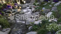 Creek,stream,creek
