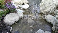 River,Creek,stream,knotts