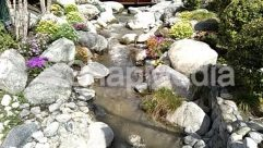Countryside, Creek, Land, Landscape, Nature, Ocean, Outdoors, Path, Plant, Pond, River, Rock, Sea, Shoreline, Stream, Vegetation, Water, Wilderness, Yard
