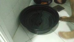 Bowl,Pot,Washing,Laundry,Water,manual laundry,handwashing clothes,comfort room