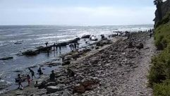 Sea, Water, Nature, Ocean, Outdoors, Person, Shoreline, Slope, Coast, Rock, Beach, Oil Spill, Animal, Bird, Waterfront