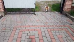 Path, Walkway, Flagstone, Brick, Animal, Canine, Dog, Pet, Mammal, Pavement, Sidewalk, Patio, Strap, Slate, Floor