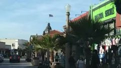Person, Plant, Tree, Street, Urban, Building, Town, Road, Arecaceae, Palm Tree, Downtown, Pedestrian, main street