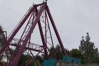 Plant, Tree, Construction Crane, Palm Tree, Arecaceae, Amusement Park, Coaster, Roller Coaster, Bridge, Building, Theme Park, Bird, Flying, Tower, Astronomy