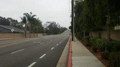 Road, Automobile, Car, Vehicle, Freeway, Highway, Path, Wheel, Sidewalk, Pavement, Plant, Tree, Vegetation, Building, Town