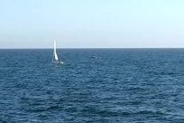Boat, Vehicle, Sailboat, Ocean, Sea, Water, Watercraft, Vessel, Yacht, Adventure, Hydrofoil, Dinghy, Horizon, Sky, Military