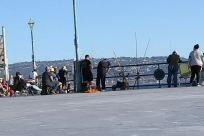 Water, Fishing, Angler, social distancing, pier