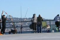 Fishing, Angler, Pants, People, Waterfront, Pier, Boat