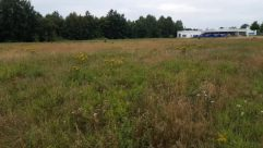 Field, Grassland, Rural, Countryside, Farm, Meadow, Plant, Vegetation, Land, Grass, Savanna, Pasture, Building, Tree, Shelter