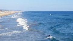 Adventure, Animal, Athlete, Beach, Bird, Boat, Coast, Human, Land, Landscape, Leisure Activities, Nature, Ocean, Outdoors, Person, Promontory, Scenery, Sea, Sea Waves, Shoreline, Skin, Sport