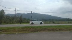Car, Vehicle, Road, Wheel, Plant, Grass, Tree, Vegetation, Suburb, Land, rustic, hill, scenery, countryside
