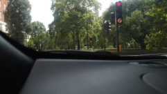 Light, Traffic Light, Plant, Tree, Mirror, Automobile, Vehicle, Car, Windshield, Vegetation, Car Mirror, Land, Woodland, Forest, Grove