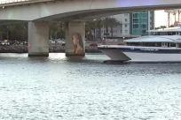 Vehicle, Yacht, Boat, Ferry, Road, Vessel, Watercraft, Building, Water, Waterfront, Bridge, Freeway
