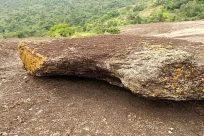Rock, Plant, Vegetation, Tree, Land, Rainforest, Wilderness, Soil, Ground, Road, Forest, Woodland, Gravel, Dirt Road, Mountain