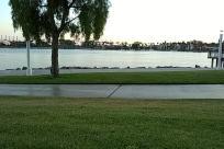 Plant, Grass, Lawn, Park, Tree, Vegetation, Water, Furniture, Field, Vehicle, Sport, Sports, Woodland, Forest, Land