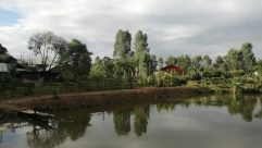 Water, Building, Land, Plant, Vegetation, Countryside, Rural, Shelter, Tree, Pond, Housing