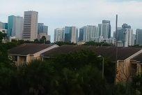 City, Building, High Rise, Town, Plant, Tree, Neighborhood, Oak, Apartment Building, Vegetation, Downtown, Road, Street, Metropolis, Suburb