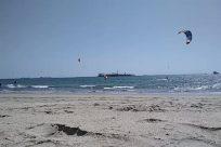 Adventure, Water, Ocean, Sea, Shoreline, Sand, Beach, Coast, Gliding, Bird, Soil, Boat, Vehicle, Ground, Toy