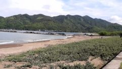 Shoreline, Ocean, Sea, Water, Land, Promontory, Coast, Vegetation, Plant, Beach, Landscape, Tree, Bush, Woodland, Forest