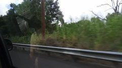 Guard Rail, Automobile, Vehicle, Car, Road, Plant, Vegetation, Tree, Land, Garden, Train Track, Rail, Railway, Slope, Arbour