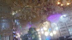 Chandelier, Lamp, Interior Design, Lighting, Furniture, Chair, Crystal, Invertebrate, Insect, Light, Honey Bee, Bee, Room, Light Fixture, Shop