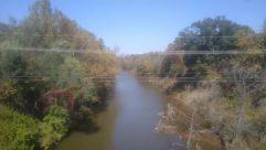 Water, Land, River, Vegetation, Plant, Landscape, Tree, Rainforest, Shoreline, Forest, Woodland, Ditch, Reservoir, Stream, Fog