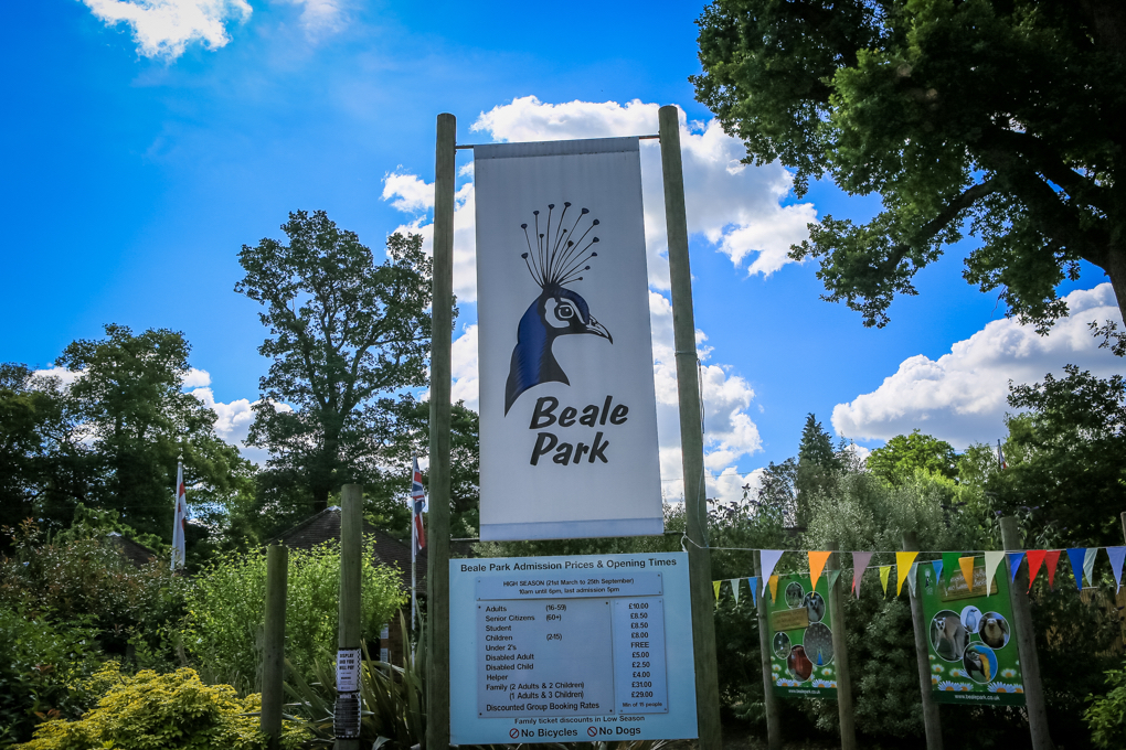 Beale Park Day Trip – 1