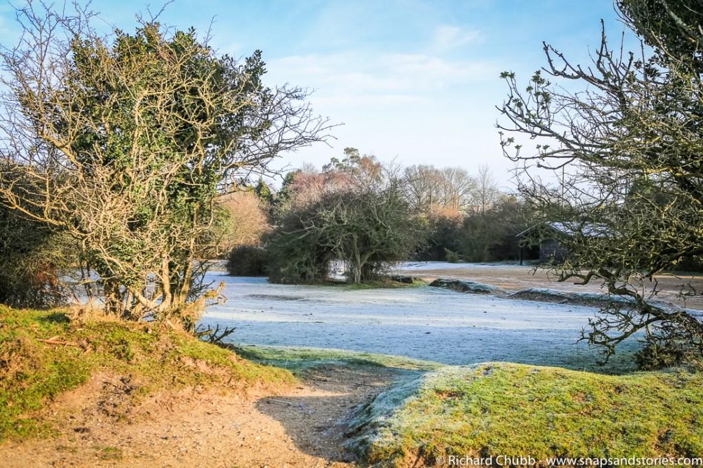 hatchet-pond-new-forest-walk-1000