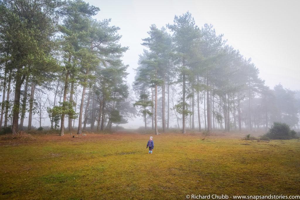 marchwood-walk-30-dec-1002