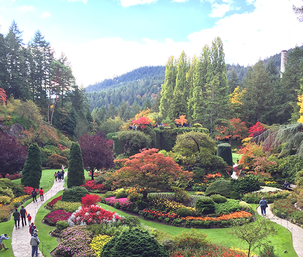 3 days in victoria b c snaps scribbles suitcases - Best time to visit butchart gardens ...