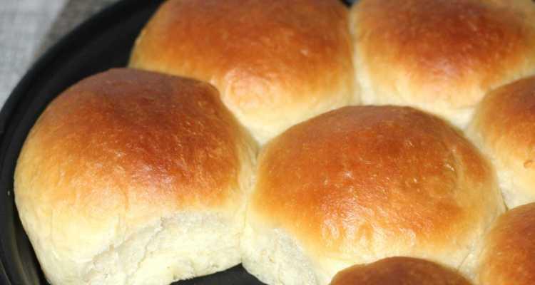 Japanese milk buns