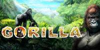 Free Gorilla Slot Novomatic