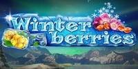 Winter Berries YggDrasil Slot