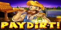 Paydirt Slot RTG