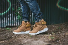 Ewing Athletics 33 Hi Fall 2017