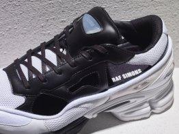 Adidas by Raf Simmons Replicant Ozweego