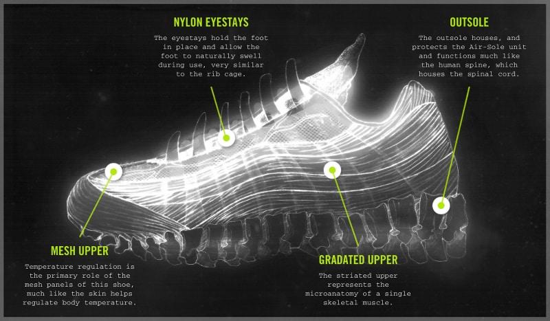 Anatomie de la Nike Air Max 95