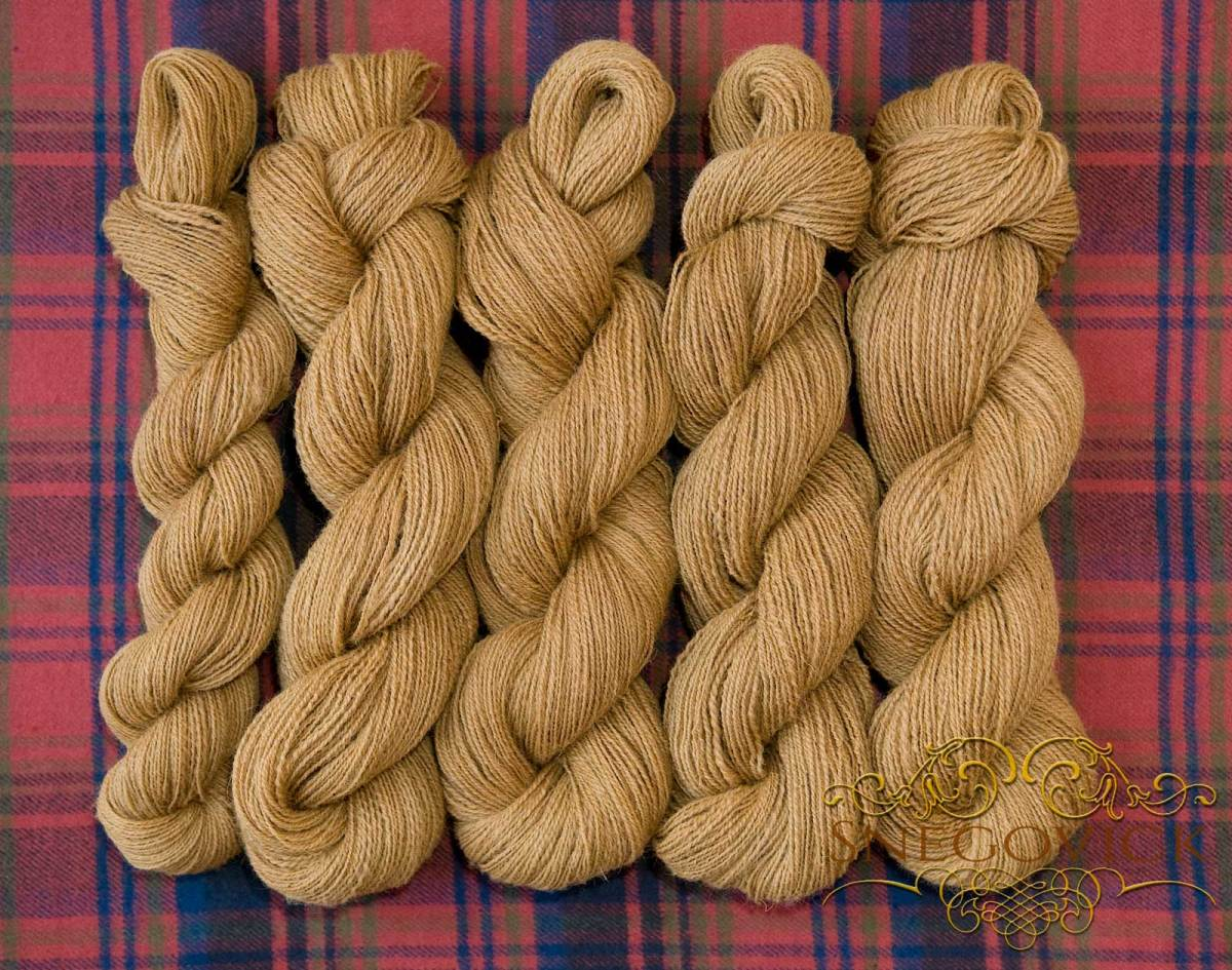 Skeins of naturally dyed wool.