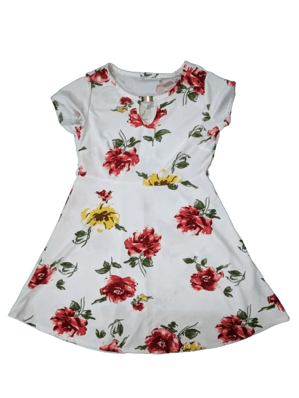 Floral Dress printed Frock