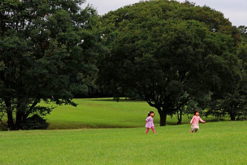 Parc de Yoyogi - Tokyo